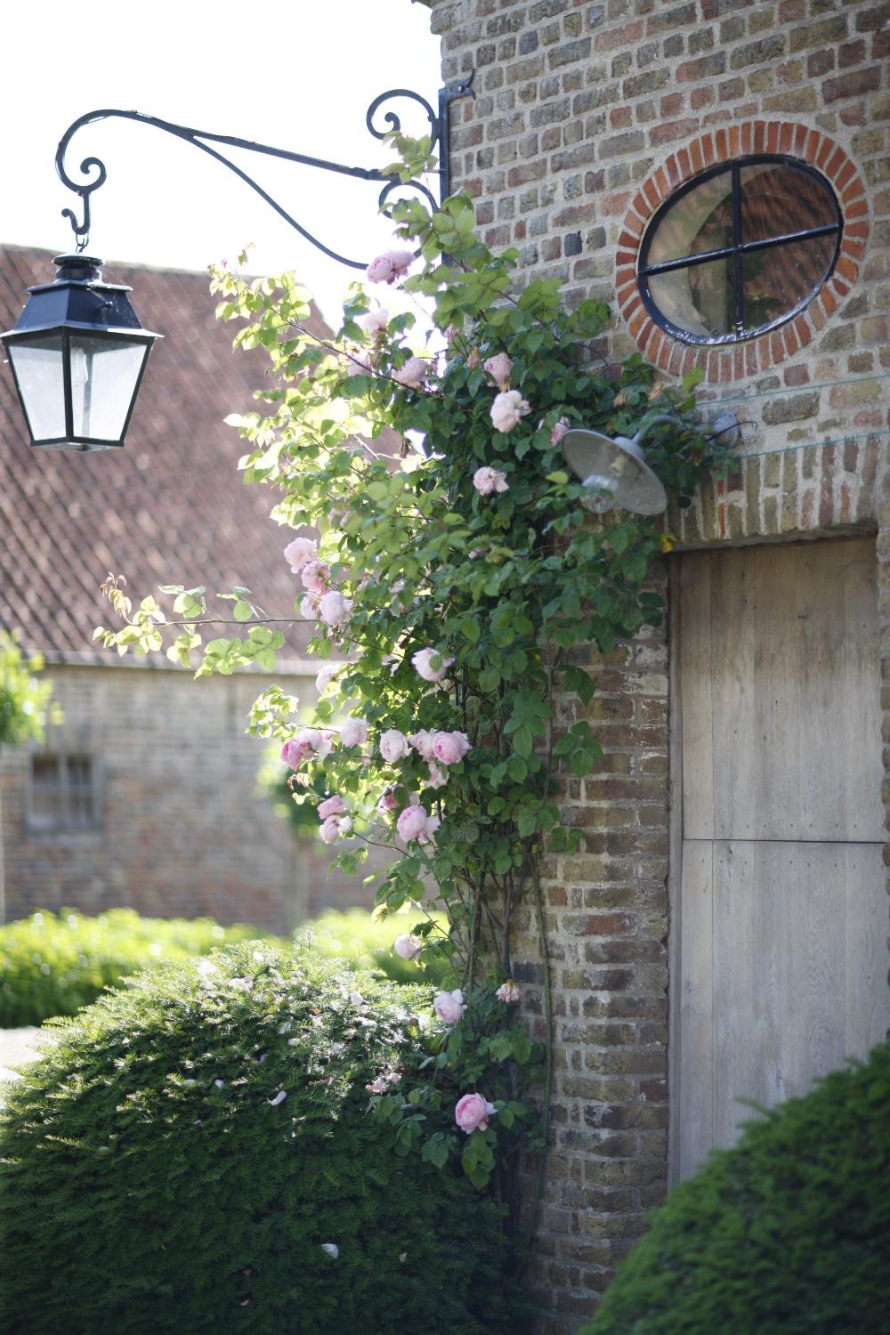 Climbing roses on old brick at The Little Monastery, a wonderful B&B near Bruges. Come enjoy photos and a tour of Belgian Design Style Inspiration from antiques dealers Alain and Brigitte Garnier.